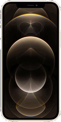 iPhone 12 Pro 5G: Gold